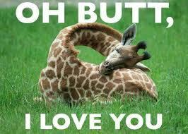 Giraffe butt - Copy